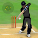 Smashing Cricket – a cricket game like none other MOD APK 1.6