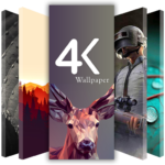 4k wallpapers Full HD Wallpapers (Backgrounds) MOD APK 1.29