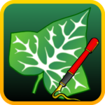 Ivy Draw: Vector Drawing MOD 1.2.1 (2)