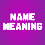 My Name Meaning MOD APK 3.0.2