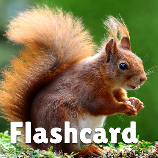 Animal flashcard & sounds for kids & toddlers MOD APK