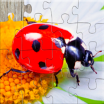 Insect Jigsaw Puzzles Game – For Kids & Adults 🐞 MOD APK 25.2