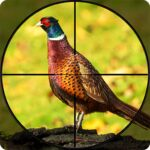 Pheasant Shooter: Crossbow Birds Hunting FPS Games MOD APK 1.1