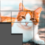 Pieces Pictures MOD APK 1.0.3