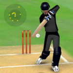 Smashing Cricket – a cricket game like none other MOD APK 3.0.3