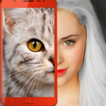Kittens: what cat are you? prank MOD APK 2.7